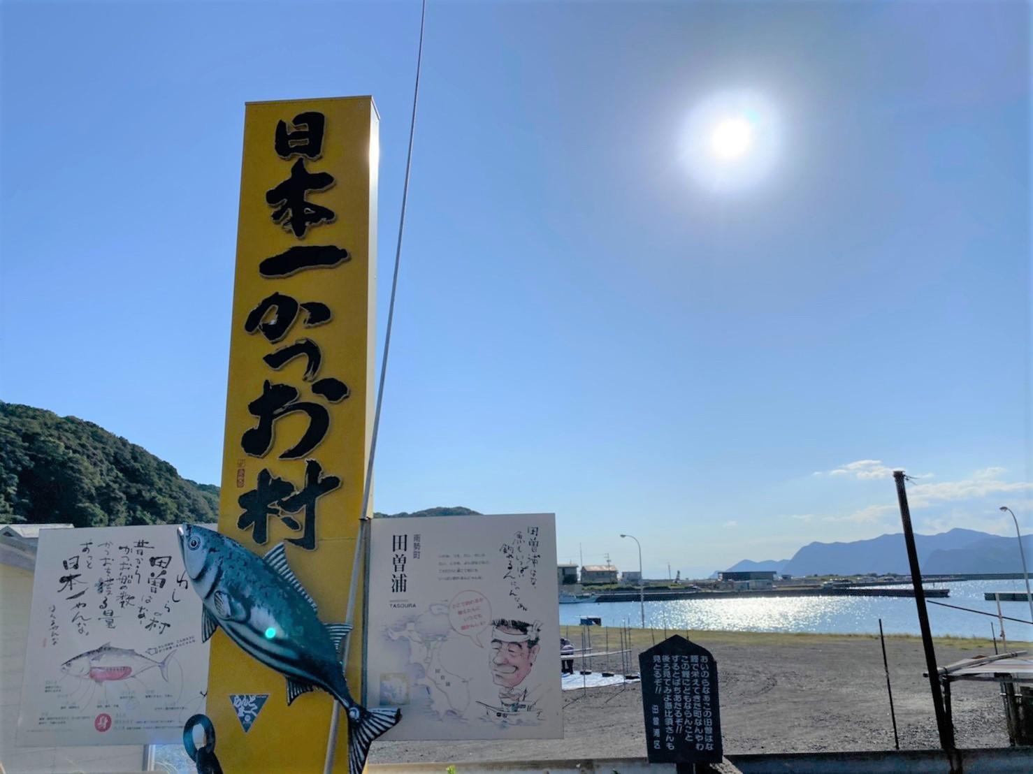 【三重県南伊勢町・人気スポット】『宿田曽漁港』の海釣りガイド(釣れる魚・駐車場・トイレ)