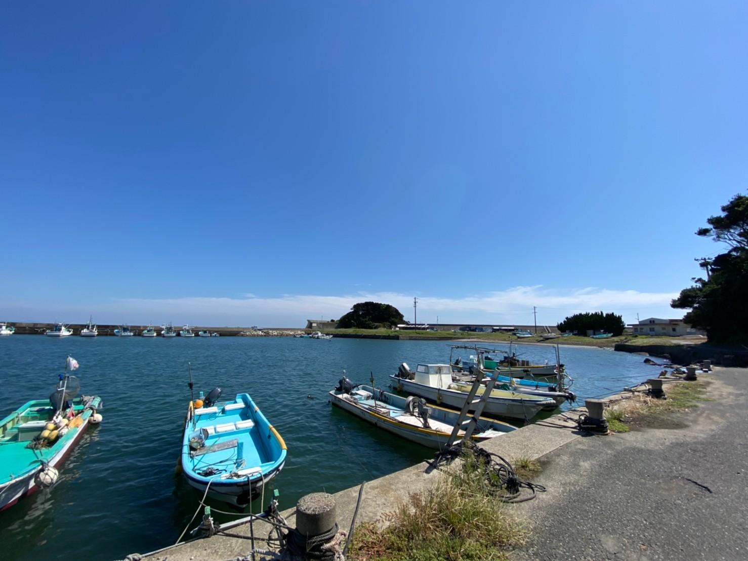 【三重県志摩市】『甲賀漁港』の海釣りガイド(釣れる魚・駐車場・トイレ)