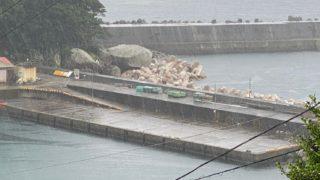 【三重県熊野市】『遊木港|ゆきこう』の海釣りガイド(釣れる魚・駐車場・トイレ)