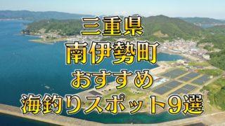 【保存版】三重県「南伊勢町」おすすめ海釣りスポット9選(釣れる魚・アクセス)