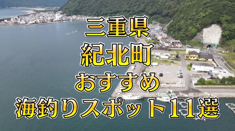 【保存版】三重県「紀北町」おすすめ海釣りスポット11選(釣れる魚・アクセス)