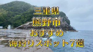 三重県「熊野市」おすすめ海釣りスポット7選(釣れる魚・アクセス)