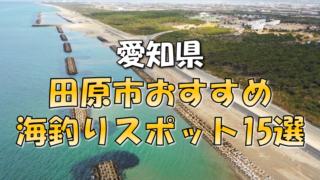 田原市おすすめ釣りスポット