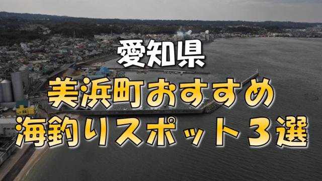 美浜町おすすめ釣りスポット